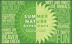 Summer Nature Experience