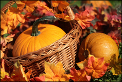 Fall Harvest Fair